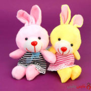 Rabbit2-B-2