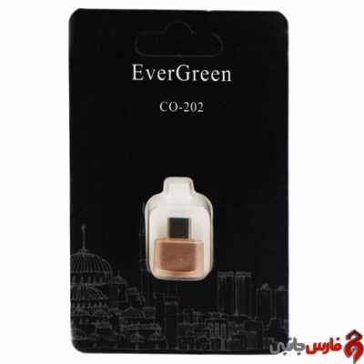 Ever-Green-CO-202-OTG-Type-C-Adapter